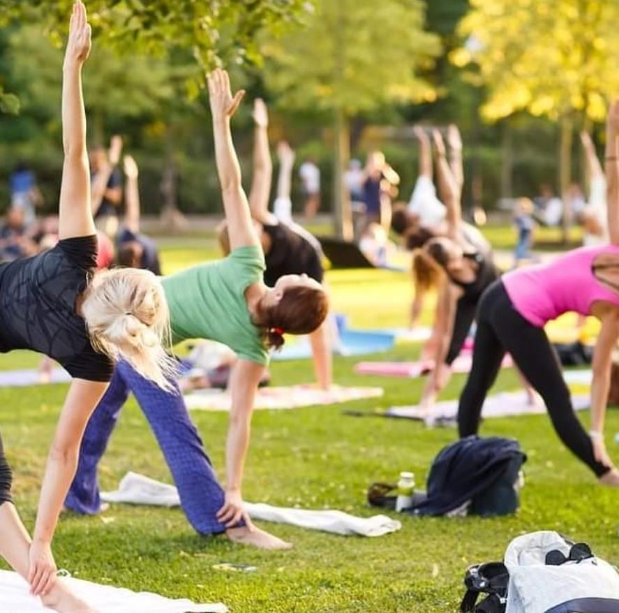 Me-Yo Akademie Yogalehrer Ausbildung 2